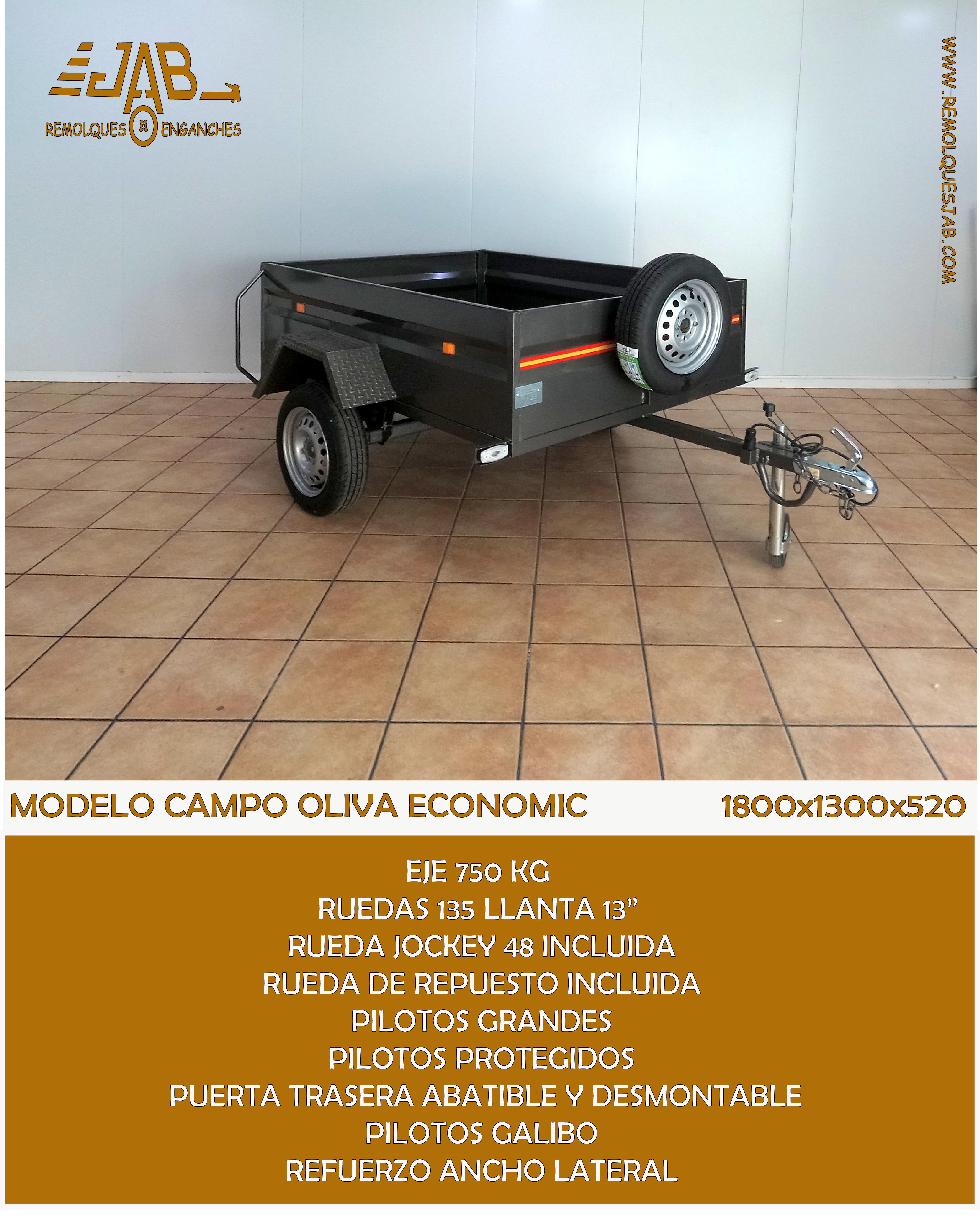 MODELO CAMPO OLIVA ECONOMIC WEB